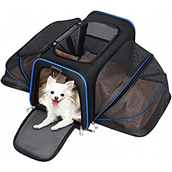Amazon Com Pet Carrier For Dogs Amp Cats Airline