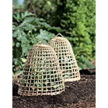 Gardener's Supply Company Willow Cloche