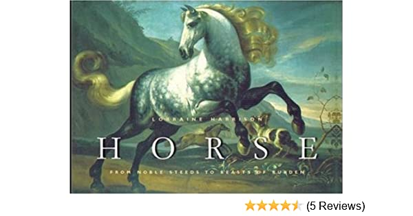 Horse from noble steeds to beasts of burden lorraine harrison horse from noble steeds to beasts of burden lorraine harrison 9780823023349 amazon books fandeluxe Gallery