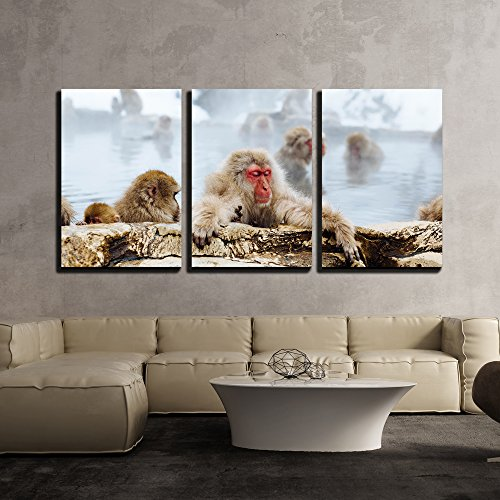 wall26 - 3 Piece Canvas Wall Art - Japanese Macaque Monkeys in Bath - Modern Home Decor Stretched and Framed Ready to Hang - 24