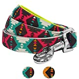Blueberry Pet 2 Colors Vintage Tribal Pattern Dog Leash with Soft & Comfortable Handle, 5 ft x 3/4, Extravagant Green, Medium, Leashes for Dogs