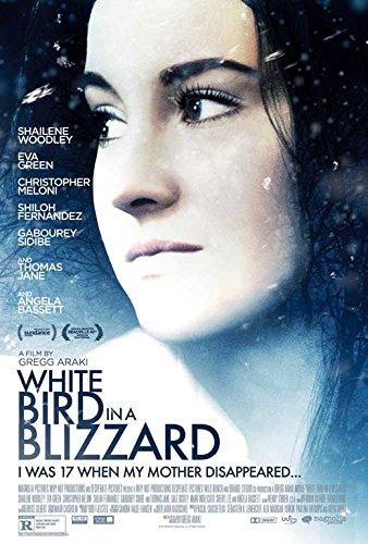 White Bird in a Blizzard 11x17 Movie Poster (2014) (White Bird In A Blizzard Movie)