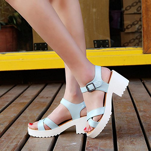 Damen Sommer High Heel Outdoor Plattform Schuhe, Kaiki Rough Sandals Frau Open Toe Fisch Mund Sandale Blue