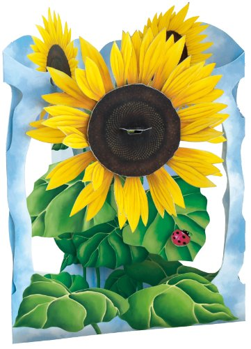 Santoro Interactive 3-D Swing Card, Sunflower Greeting Card