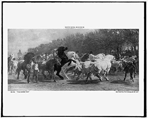 1908 Horse (16 x 20 Ready to Hang Canvas Wrap The Horse fair 1908 Detriot Publishing 66a)