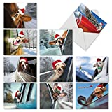 M6481XSB Holiday Doggie In The Window: 10 Assorted Blank Christmas Note Cards Featuring Holiday Pups With Their Heads Hanging out the Passenger Side Window of a Car, w/White Envelopes.