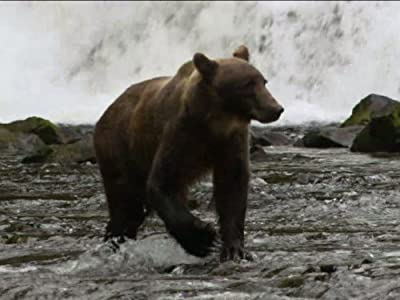Fortress of the Bears
