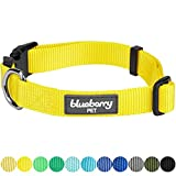 Blueberry Pet 12 Colors Pack of 2 Classic Dog