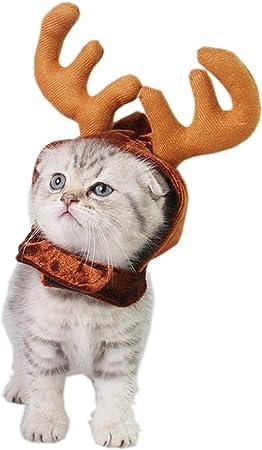 SurfMall Disfraz de Gata Ropa para Gatos Perros Mascotas Astas ...