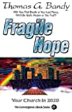 Fragile Hope: Your Church in 2020 (Convergence Ebook Series)