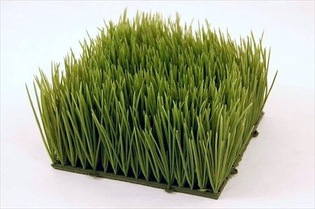 Artificial Wheat Grass- Fake Soft PVC Plastic Decorative Wheatgrass: Ornamantal Flower Arranging & Home Decor - 6