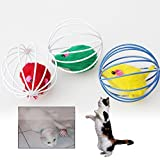 Funnytoday365 Pet Toys - Best Reviews Guide
