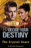 Doctor Who: The Crystal Snare: Decide Your Destiny: Number 5: Decide Your Destiny No. 5