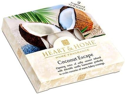 Coco Escape caja de té luz velas: Amazon.es: Hogar