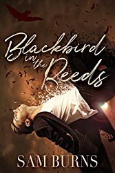 Blackbird in the Reeds (The Rowan Harbor Cycle Book 1)