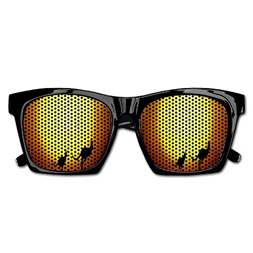Elephant AN Themed Novelty Australia Koala Kangaroo Sunset Fashionable Visual Mesh Sunglasses Fun Props Party Favors Gift - Bans Ray Australia Online