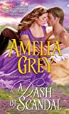 A Dash of Scandal by  Amelia Grey in stock, buy online here