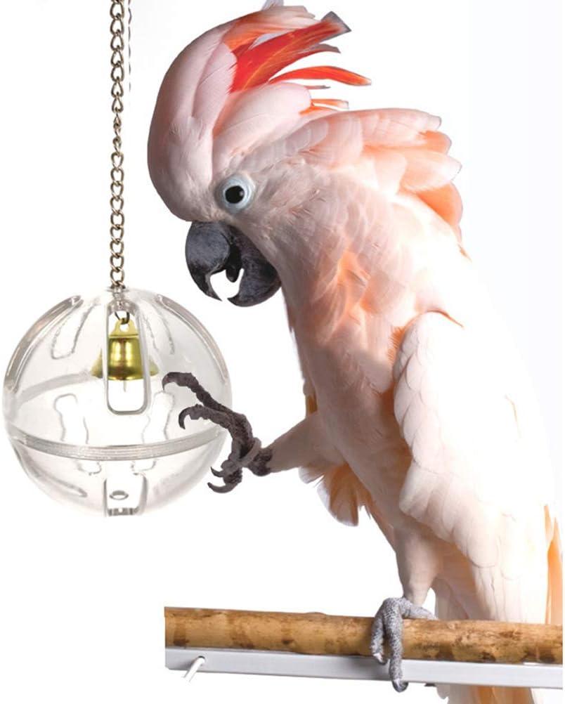 POPETPOP 3pcs Pappagallo Giocattoli Pappagallo Alimentazione Palla Strumento di Alimentazione Animale Giocattolo Set Gioco di Alimentazione Palla e Custodia per Pappagallo