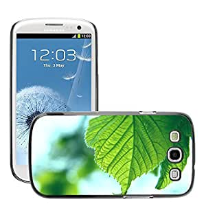 Super Stellar Slim PC Hard Case Cover Skin Armor Shell Protection // M00052215 macro green aero leaves fresh // Samsung Galaxy S3 i9300