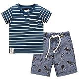 Toddler Boys Stripy Dinosaur Summer Tee and Shorts Pants Set 5t