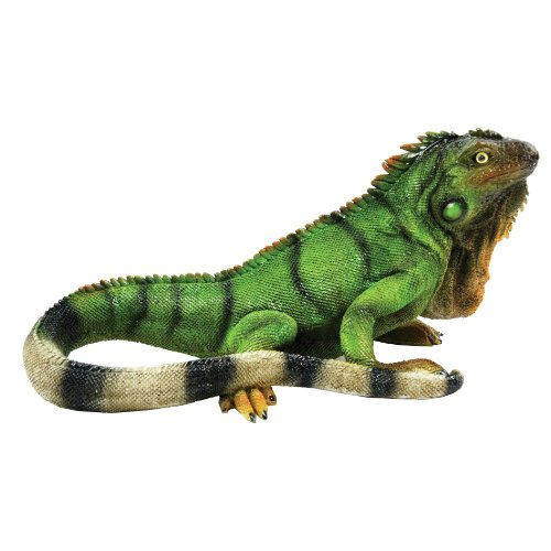 (Michael Carr Designs 80059 Iguana Outdoor Statue, Medium)