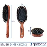 Spornette DeVille Cushion Oval Boar Bristle Hair