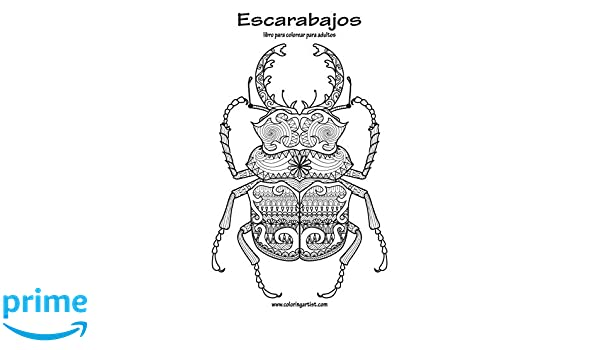 Escarabajos libro para colorear para adultos 1: Volume 1: Amazon.es ...