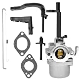 697978 Carburetor for Generator Briggs & Stratton
