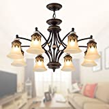 8-Light Black Wrought Iron Chandelier with Glass Shades (E-1001-8X) Review