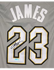 Lebron James Cleveland Cavaliers Cavs Signed Autographed New Style Alternate The Land Gray #23 Jersey
