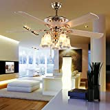 AndersonLight Modern Ceiling Fan with 5 Reversible Blades 5 Frosted Light Kit and Remote Control, Quiet Fan, Ecological Chandelier Fan, Golden Finish, 52-Inch Review