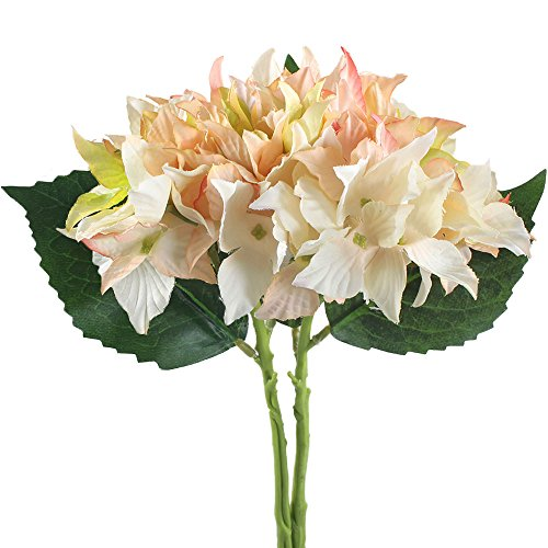 Gtidea 2pcs Artificial Starfish Hydrangea flowers Silk Bouquets Arrangements Bridal Home DIY Floor Garden Office Wedding Decor Champagne (Pink Long Stem Vases)