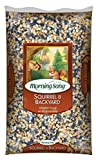 Morning Song 11995 Squirrel and Backyard Wildlife Food, 10-Pound