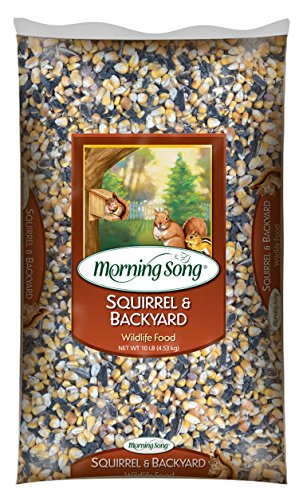 Morning Song 11995 Squirrel and Backyard Wildlife Food, (Kaytee Squirrel)