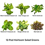 AeroGarden 812604-0208 Heirloom Salad Greens Seed