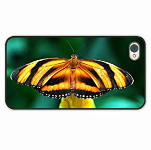 Customize Iphone 4 & 4S Macro Butterfly Species Wings Band Branch Of Girlfriend Present Black Case Cover For Girl