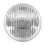 GE Lighting 42072 35-Watt 250-Lumen PAR36 Floodlight Bulb with Medium Base, 12-Pack