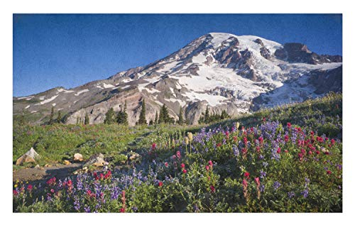 Ambesonne Wildflower Doormat, Nature Themed Landscape Mt. Rainier with Snow at Springtime Photo, Decorative Polyester Floor Mat with Non-Skid Backing, 30