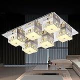 MEIREN Ceiling Lamp 6 Light Modern Simple Artistic , 110-120V