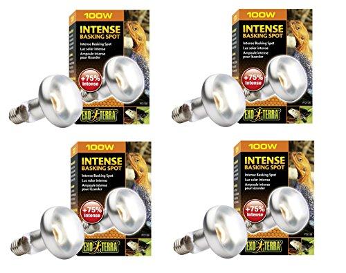 100 watt reptile heat bulb - 8