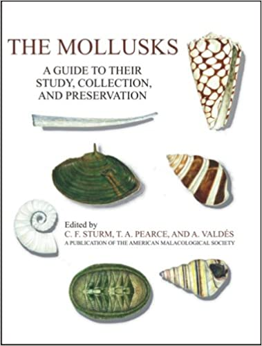Amazon The Mollusks A Guide To Their Study Collection And