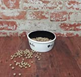 PET BOWL CERAMIC CAT FEEDER WHITE FISH SHAPE BLACK BOWL, 80539 BY ACK
