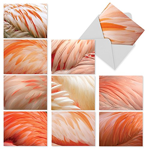 M3004 Pink Flamingo: 10 Assorted Thank You Note Cards Featuring Photos of Fluffy Pink Flamingos' Feathers Close-Up, w/White Envelopes.