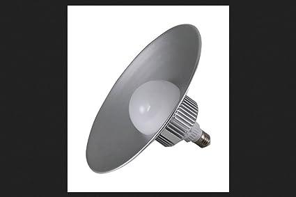 Keystone Led Lighting 2500 Lumen Led Utility Bulb With Hood 30w