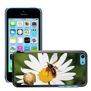hello-mobile Etui Housse Coque de Protection Cover Rigide pour // M00136403 Abejas de la miel de la flor // Apple iPhone 5C
