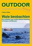 Wale beobachten: Ein Leitfaden zum sanften Whale Watching in Europa und Übersee (Basiswissen für draußen)