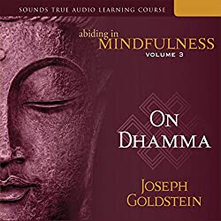 Abiding in Mindfulness, Vol. 3