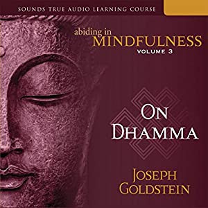 Abiding in Mindfulness, Vol. 3 Audiobook