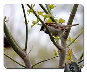 House Sparrow Mouse Pad, Mousepad (Birds Mouse Pad)