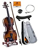 SKY 4/4 Full Size SKYVN201 Solid Maple Wood Violin